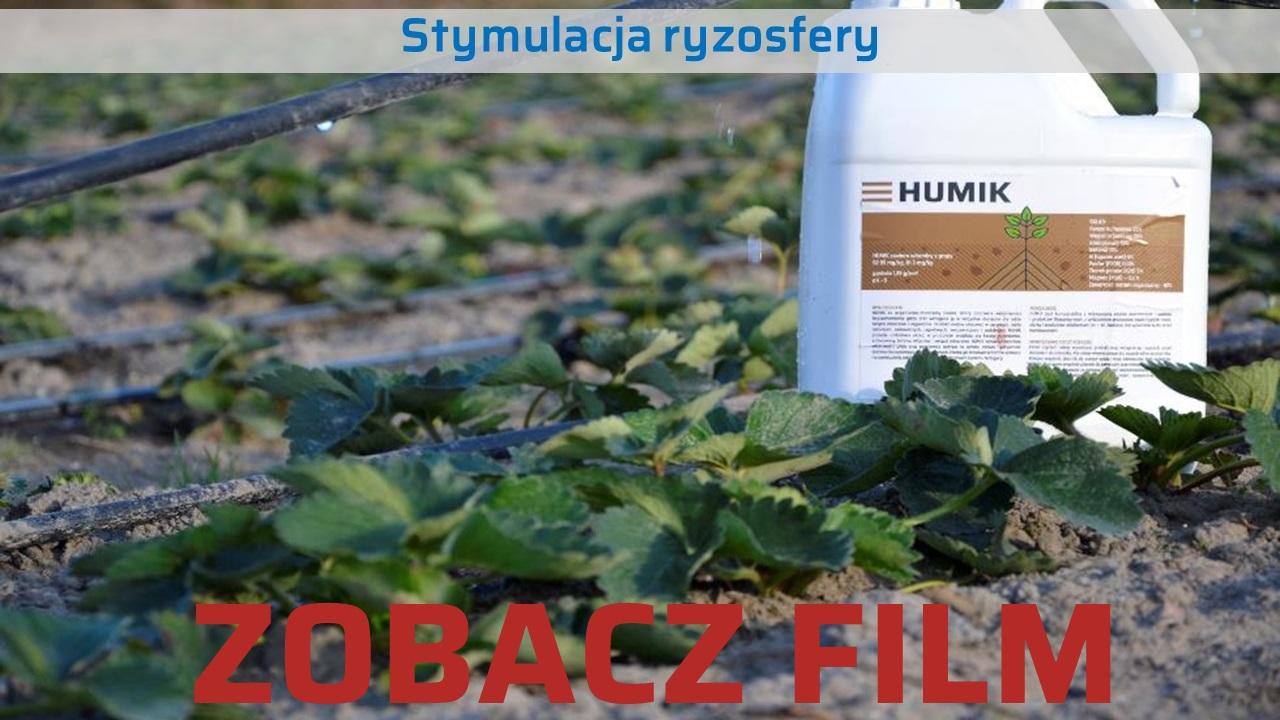 Nawoz-Humik-stymulacja-ryzosfery